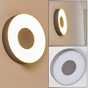 Outdoor Wall Light Felsted LED silver, 1-light source