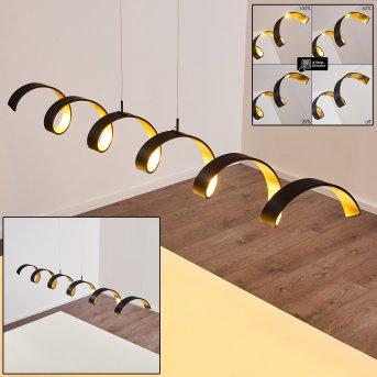 REZAT Pendant Light LED black-gold, 1-light source