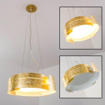 Novara hanging light gold, 3-light sources