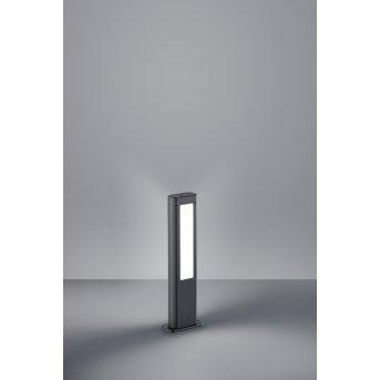 Trio RHINE pedestal light LED anthracite, 2-light sources