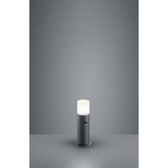 Trio HOOSIC pedestal light anthracite, 1-light source, Motion sensor