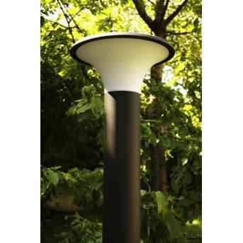 Trio KONGO outdoor floor lamp black, 1-light source