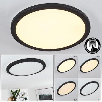 SIGUNA Ceiling Light LED black, white, 1-light source
