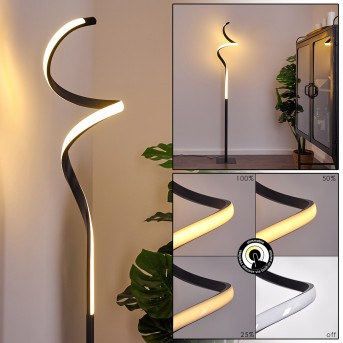 PITASCH Floor Lamp LED black, 1-light source
