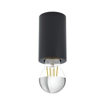 Eglo SALUZZO light black, 1-light source