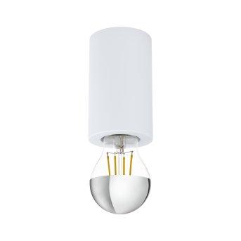 Eglo SALUZZO light white, 1-light source