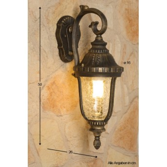Orion outdoor wall light transparent, clear