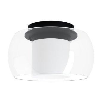 Eglo BRIAGLIA Ceiling Light LED black, 1-light source, Colour changer
