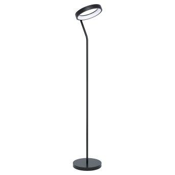 Eglo MARGHERA Floor Lamp LED black, 1-light source, Colour changer