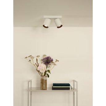 Lucide NIGEL ceiling spotlight LED white, 2-light sources