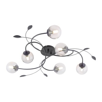 Paul Neuhaus WIDOW Ceiling Light LED black, 6-light sources