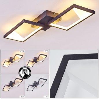 HAYA Ceiling Light LED black, 2-light sources
