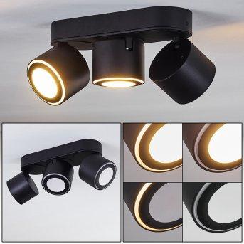 APPLETON Ceiling Light LED black, 2-light sources
