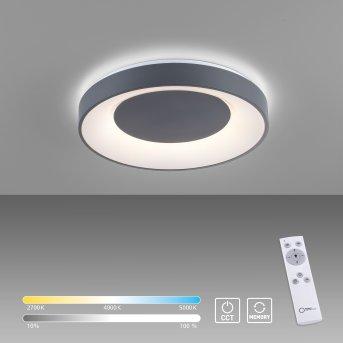 Leuchten-Direkt ANIKA Ceiling Light LED black, 1-light source, Remote control