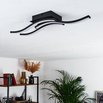 Grossari Ceiling Light LED black, 3-light sources