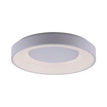 Leuchten-Direkt ANIKA Ceiling Light LED white, 1-light source, Remote control