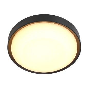 Steinhauer FUGA outdoor ceiling light LED black, 1-light source