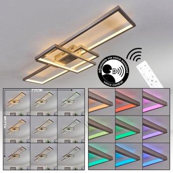 Momahaki Ceiling Light LED matt nickel, 1-light source, Remote control