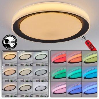 Gladstone Ceiling Light LED black, white, 1-light source, Remote control