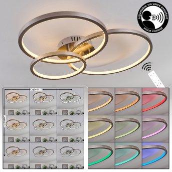 Moemoto Ceiling Light LED matt nickel, 1-light source, Remote control