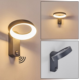 Carinola Outdoor Wall Light LED anthracite, 1-light source, Motion sensor