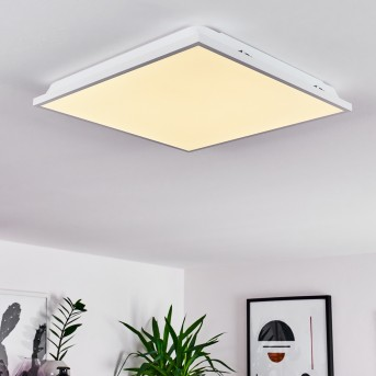 Cere Ceiling Light LED white, 1-light source
