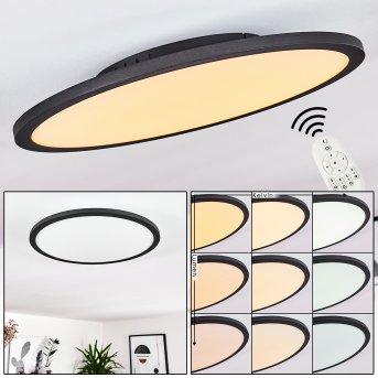 Nexo Ceiling Light LED black, 1-light source, Remote control