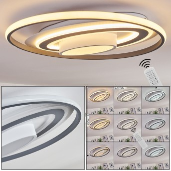 Goro Ceiling Light LED grey, white, 1-light source, Remote control
