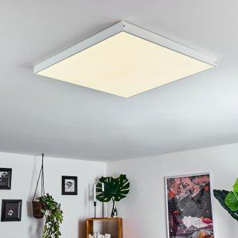 Pedemonte Ceiling Light LED white, 1-light source
