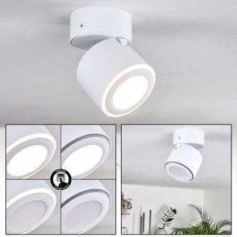 Appleton Ceiling Light LED white, 2-light sources