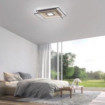 Paul Neuhaus Q-AMIRA Ceiling Light LED black, 1-light source, Remote control