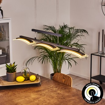 Bolonda Pendant Light LED black, 3-light sources
