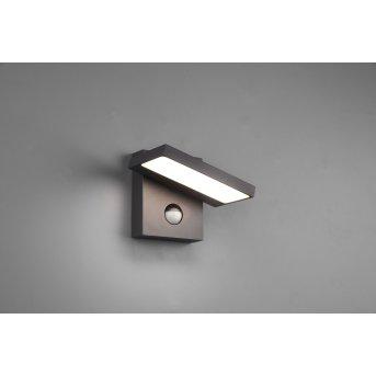 Trio Horton Outdoor Wall Light LED anthracite, 1-light source, Motion sensor