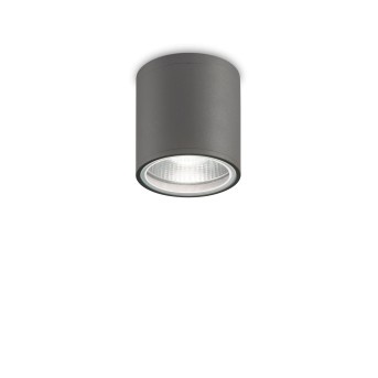 Ideallux GUN outdoor ceiling light anthracite, 1-light source