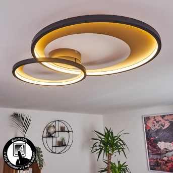 Tuzik Ceiling Light LED black, gold, 1-light source