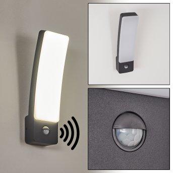 Maseru Outdoor Wall Light LED anthracite, 1-light source, Motion sensor