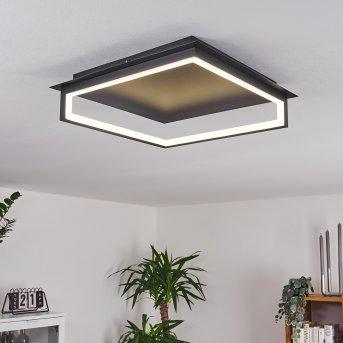 Taxmido Ceiling Light LED black, 1-light source