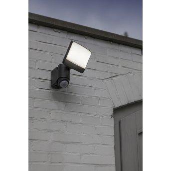 Lutec SUNSHINE Outdoor Wall Light LED anthracite, 1-light source, Motion sensor
