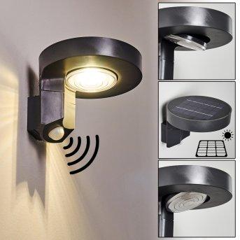 Outdoor Wall Light Townsville LED black, 1-light source, Motion sensor