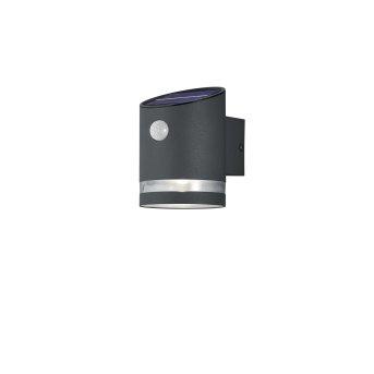 Reality SALTA Wall Light LED anthracite, 1-light source, Motion sensor
