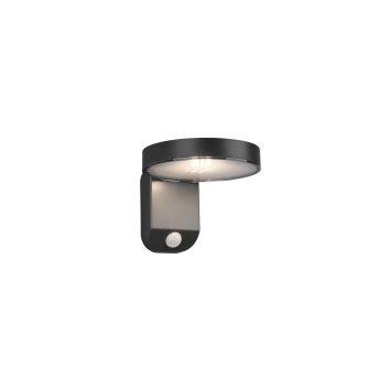 Reality POSADAS Wall Light LED anthracite, 1-light source, Motion sensor