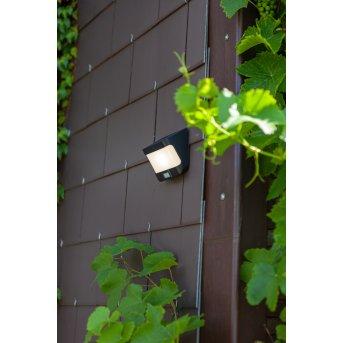 Lutec TRY Solar lights LED anthracite, 1-light source, Motion sensor