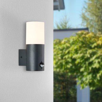 Brillliant Aberdeen Outdoor Wall Light black, 1-light source, Motion sensor