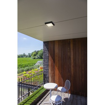 Lutec Helena outdoor ceiling light LED anthracite, 1-light source