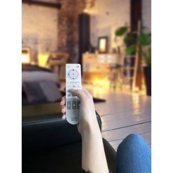 Lutec Remote remote control grey, white