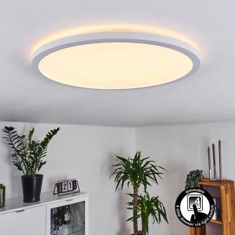 Boyero Ceiling Light LED white, 1-light source