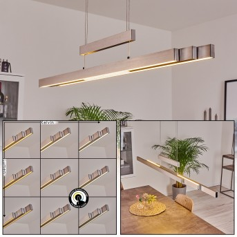 Inicio Pendant Light LED matt nickel, 5-light sources
