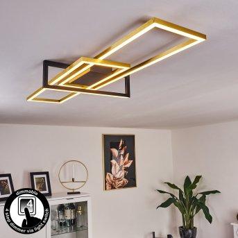 Omega Ceiling Light LED black, 1-light source