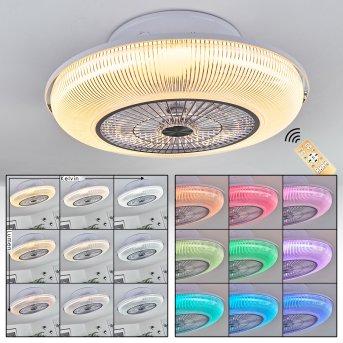 Riccione ceiling fan LED white, 1-light source, Remote control, Colour changer