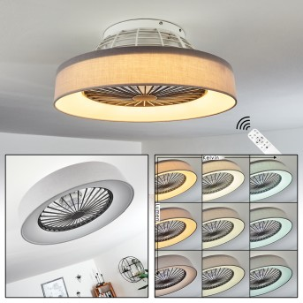 Moli ceiling fan LED grey, white, 1-light source, Remote control